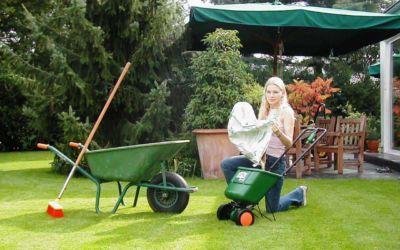 Pflegeanleitung Rasen